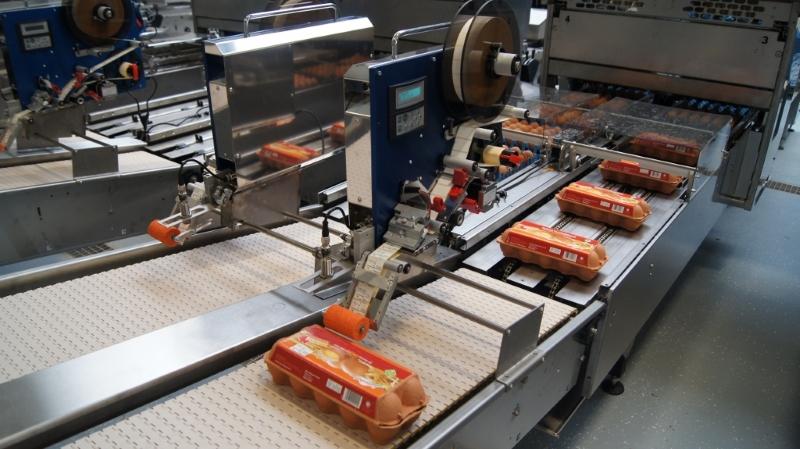 Stampanti EH - Etichettatura uova